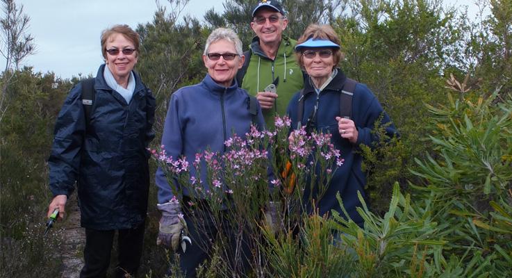 Tea Gardens Hawks Nest Walkers