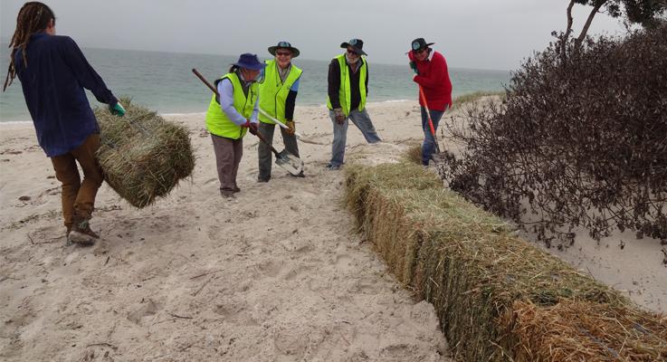 Stolen Hay Bales at  a Hawks Nest beach