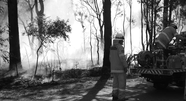 bush fire pic