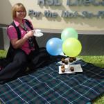 Tea Gardens Grange Julie Woolard