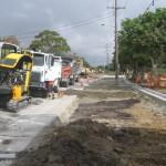 Marine Drive Tea Gardens Removal of trees
