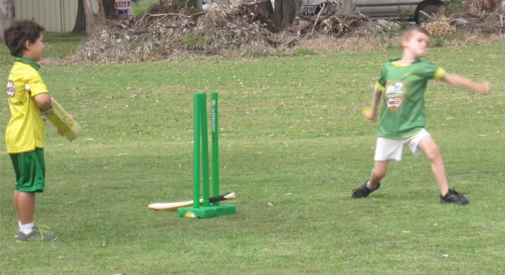 Milo junior cricketers