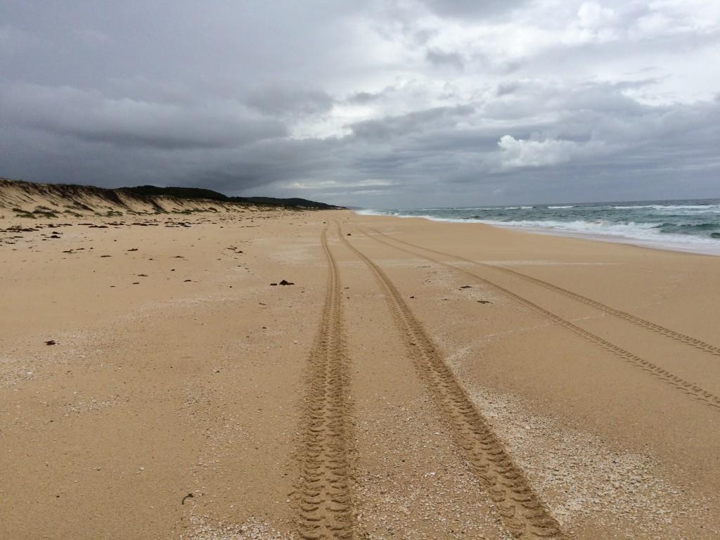 Mungo Beach reopens