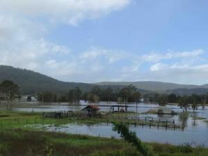 The flood plains, Bulahdelah