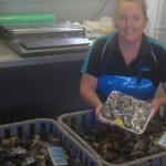 Karuah oyster farmers are back in business