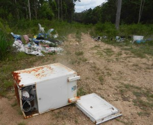 Rubbish currently sitting in Karuah National Park which Amanda and her volunteers will be targeting in this year's clean up.