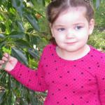 Bulahdelah's Sophie Grills' battle with cancer