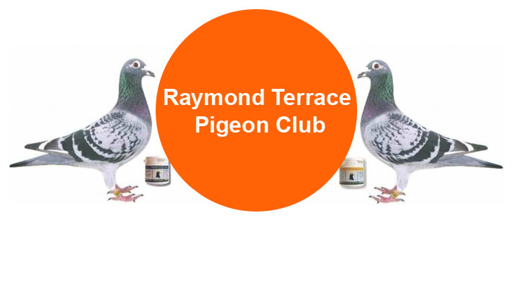 Raymond Terrace Pigeon Club