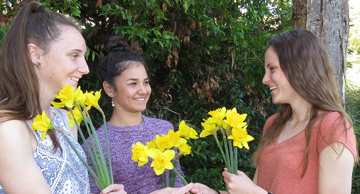 . SOMEONE I KNOW: Kaitlyn Osborne, Megan Markham and Marley Mezi support Daffodil Day for Kaitlyn's Aunty, Leanne.