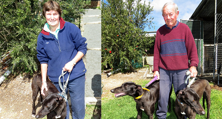 OWNER: Debbie Robinson with her greyhound Oscar.(left)OWNER: John Loughran with his greyhounds Oscar and Little One.(right)