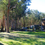 Land at 47 Cambage Street, PINDIMAR SOUTH is on the market