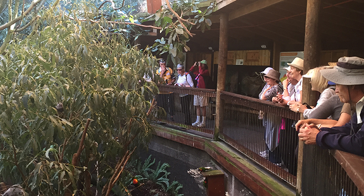 The group at the Blackbutt Reserve.
