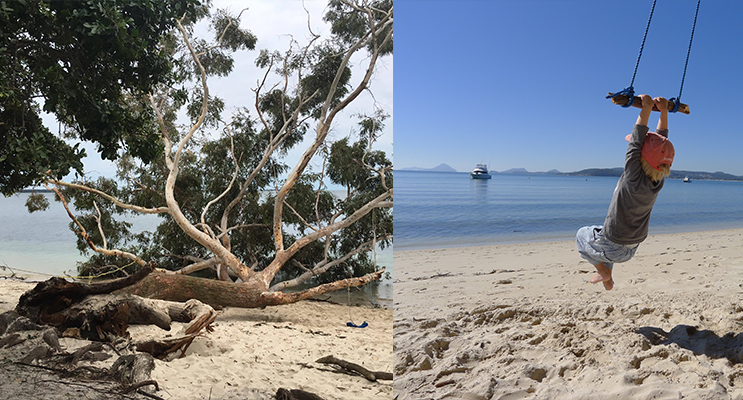 The majestic old gentleman lays motionless on the Wanda Beach Strip. (Photo Courtesy of Mark Faragher) (left) -Childhood memories. (photograph courtesy of Emma Bowen) (right)