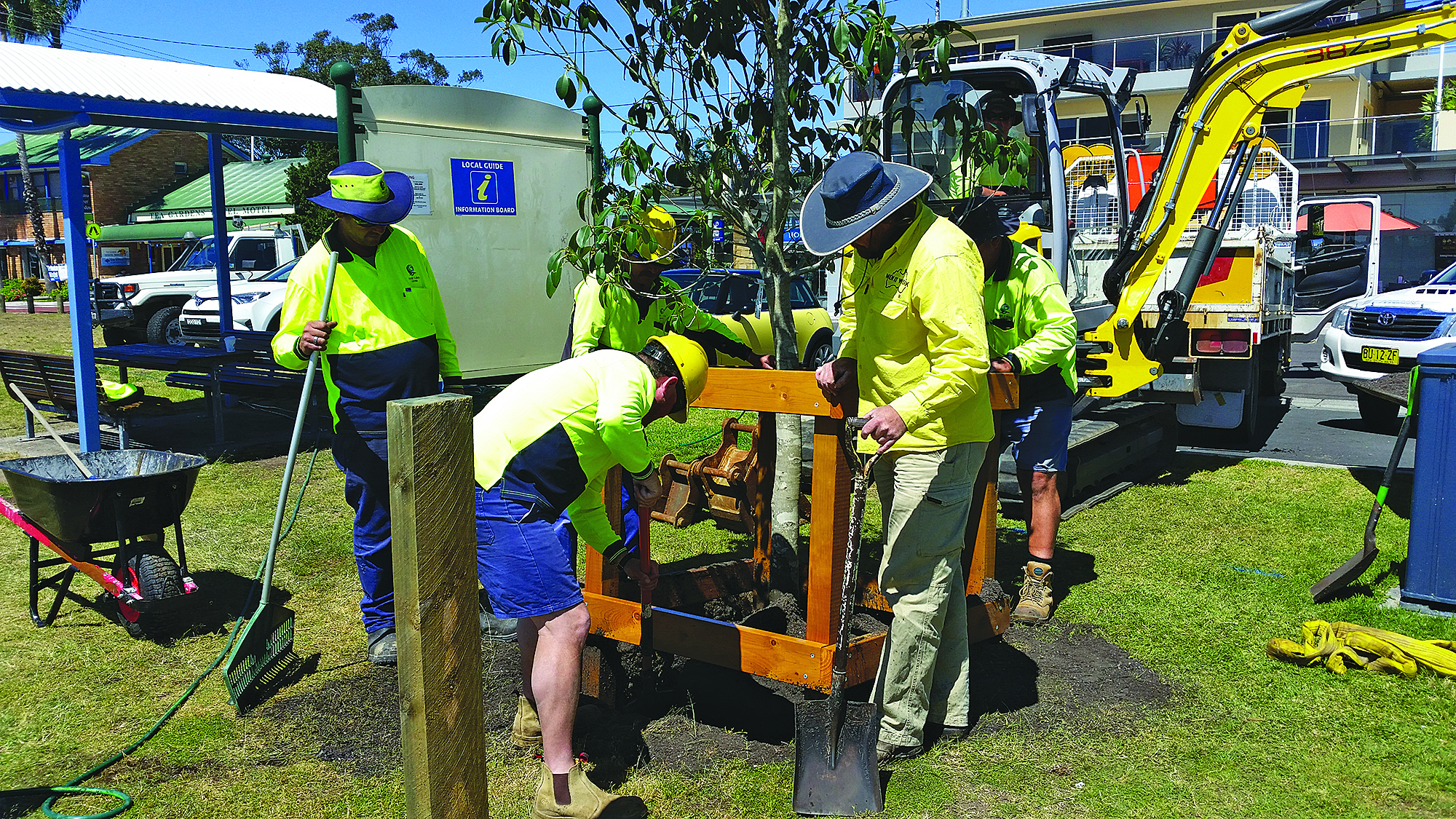 FORESHORE FIGS: Council workmen plant trees.