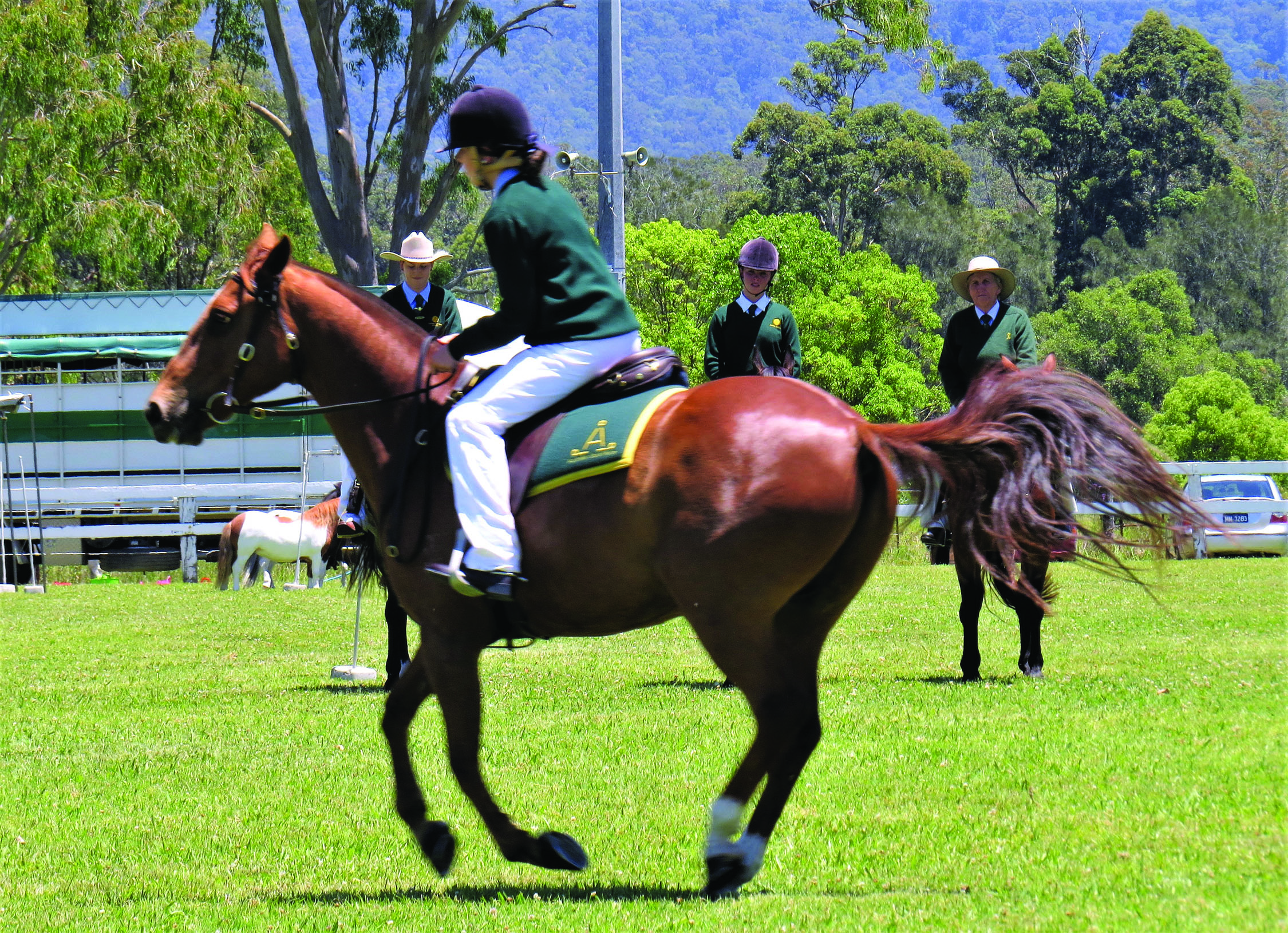 COMPETITION: Horse events in the main arena