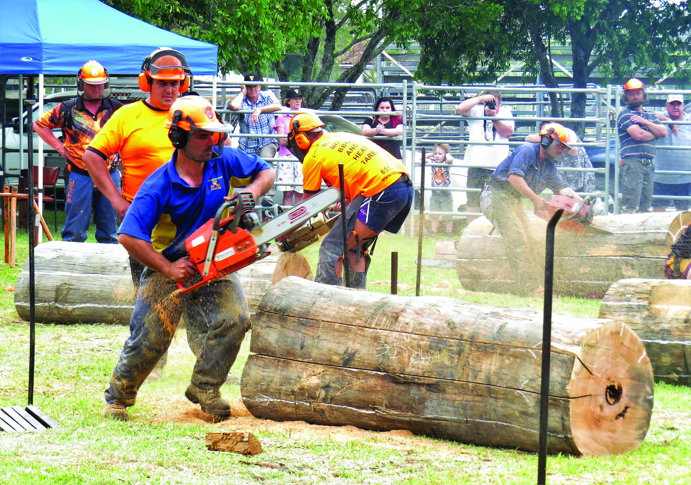 COMPETITION: Dust flies in the chainsaw race