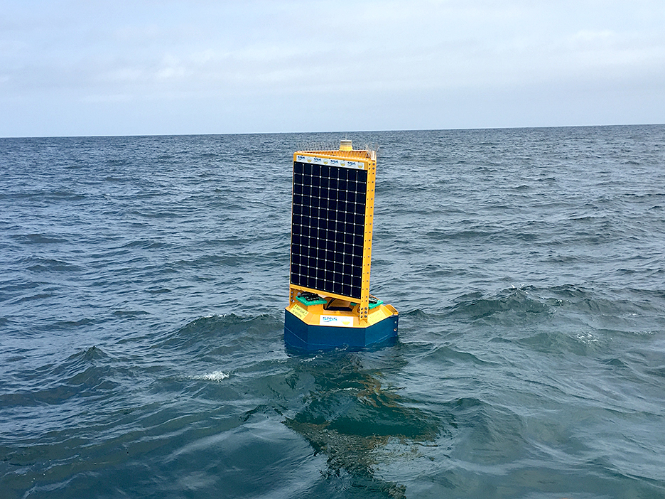 Australian developed Clever Buoy with its shark detecting technology could expand globally if research project off Port Stephens proves successful. Photo supplied by Shark Mitigation Systems