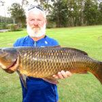 European Carp caught in Myall River near Bulahdelah