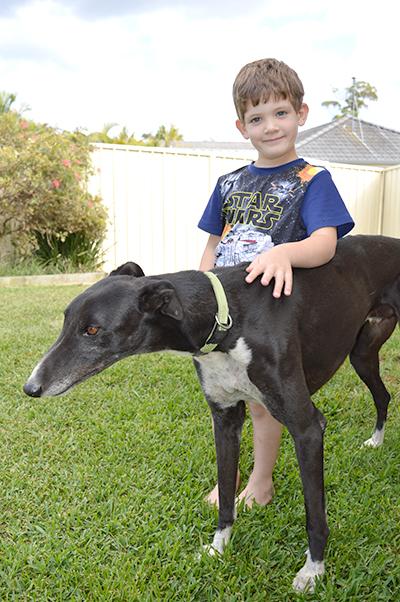 Neddy (greyhound) with Michael Kilday.