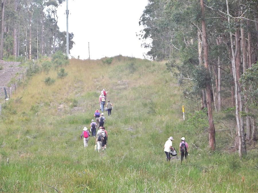 Thursday Walkers on their trek.