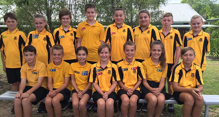 Medowie Public School Sports Captains and Vice-Captains for 2017.