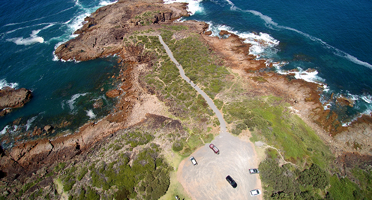 Mark your calendar for the opening of the new whale watching path at Noamunga Reserve, Boat Harbour. Photo by Steve Elgar