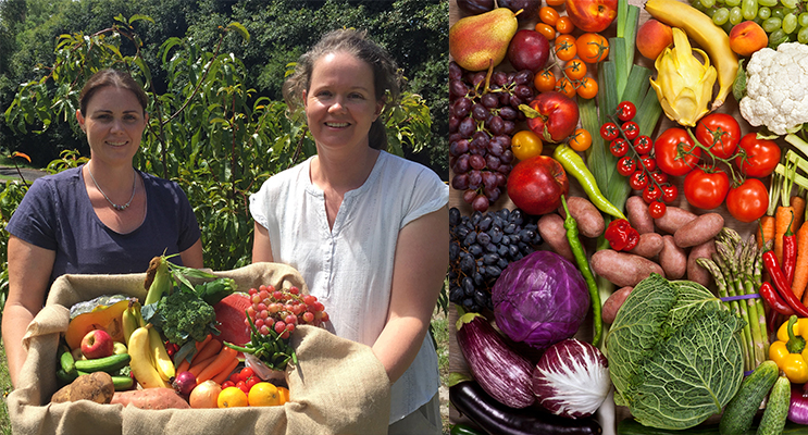 Kristy Arnall and Madeleine Elsegood. Photo by Jo Finn (left) Organic Fruit and Vegetables are delivered weekly to local residents. Photo supplied