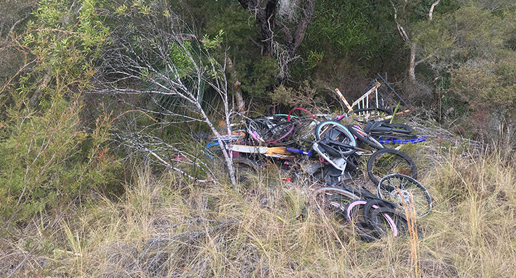 The Worimi Local Aboriginal Land Council's Green Team is clearing illegal dumping.