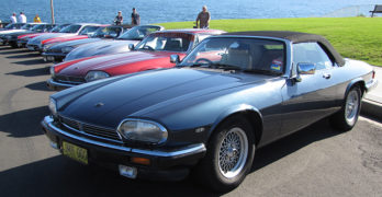 Jags Prowling Port Stephens event