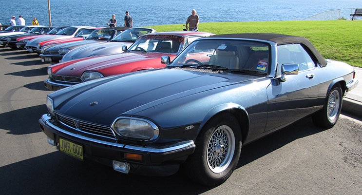 Some of the Jaguars you will see during the event. Photo by: Ken White