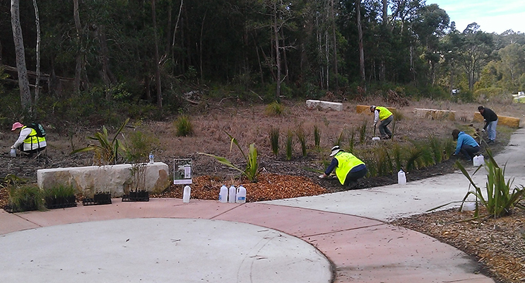 Corlette Parks Reserves and Landcare Group working at Lorikeet Reserve.