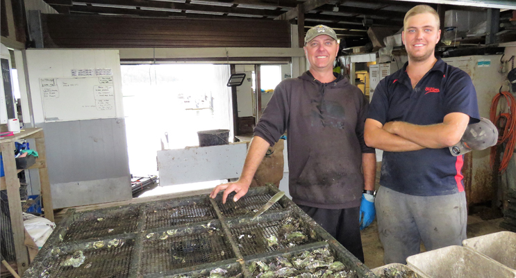 Family Business: Stephen and Brock Cole at Cole Bros Oysters.