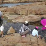 Red Zone rock pool walk a success