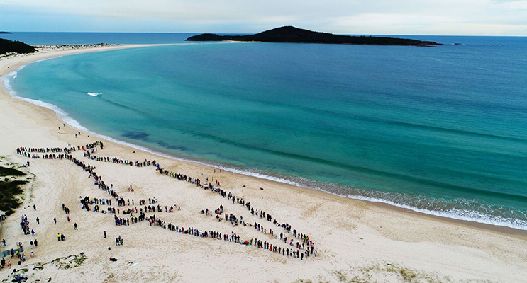 Drone image of the Human Whale.