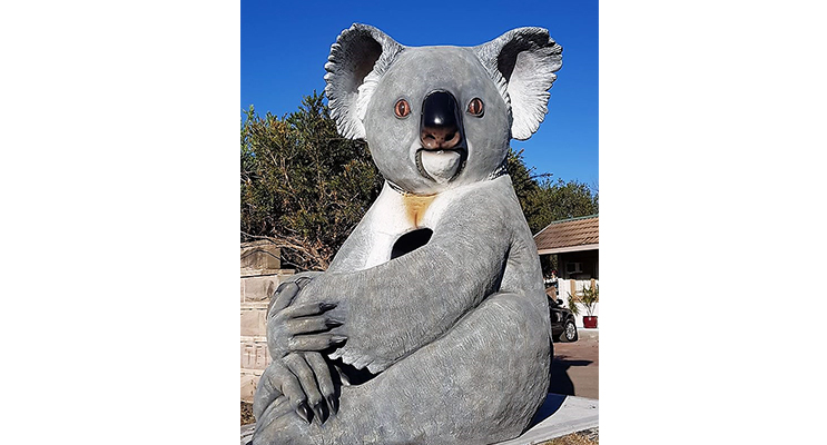 The Big Koala is located roadside at the Mount View Motel.