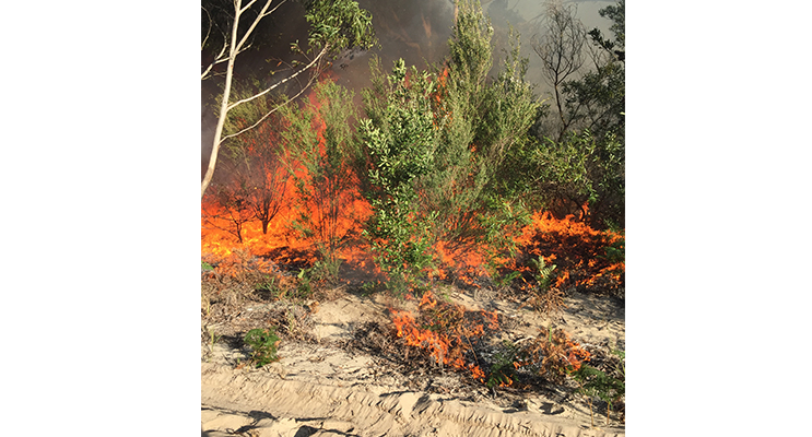 Be alert for back burning areas as the Rural Fire Brigade prepare for summer.