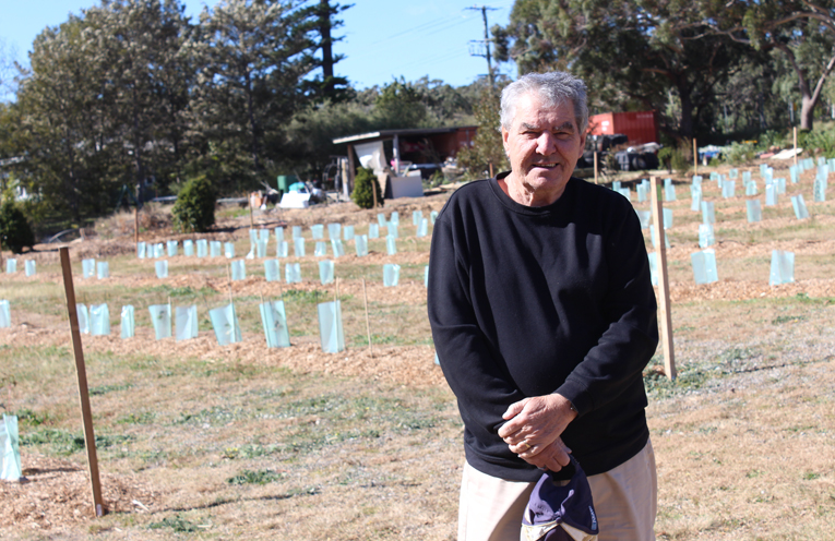 Gerry Mohan overlooking the newly planted koala trees at the Anna Bay property.