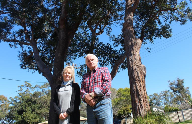 Lemon Tree Passage resident Vicki Ross with Mayor Bruce MacKenzie in front of the dangerous trees.