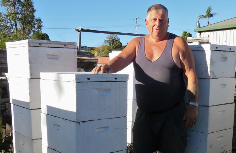 Backyard Bees: Beekeeper Gary Haynes.