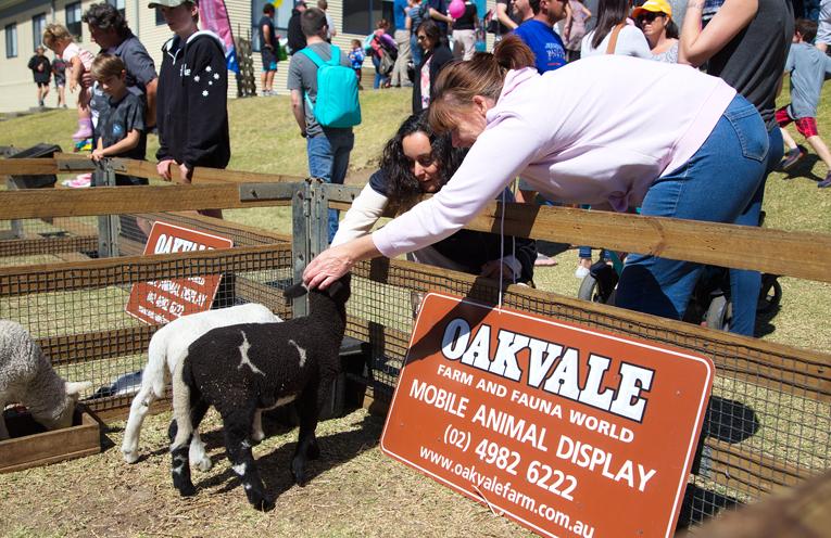 Oakvale farm animals. Photo by Pete Neville