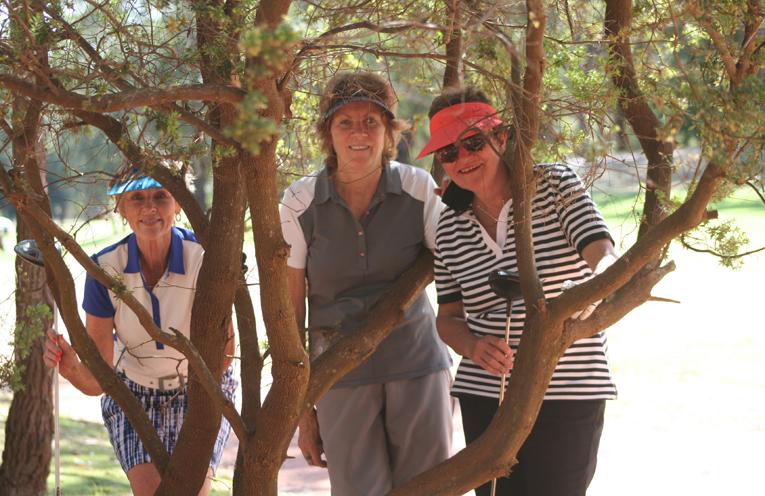 Barbara Clark (Nelson Bay), Robyn Butler (Nelson Bay), Sally Gordon (Duntryleague). Photos provided
