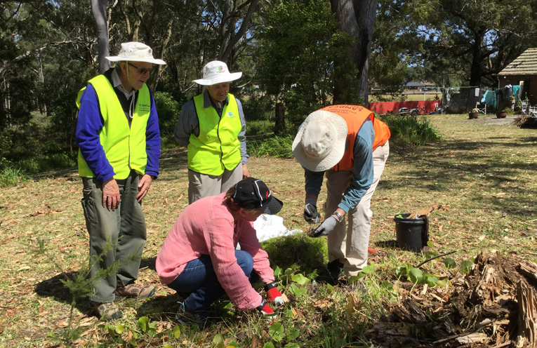 NEWS_CUSACK_MLC_VISITS_LANDCARE_MS_PY