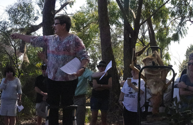 Kathy Brown of Soldiers Point Salamander Bay Landcare Group addressing the crowd.