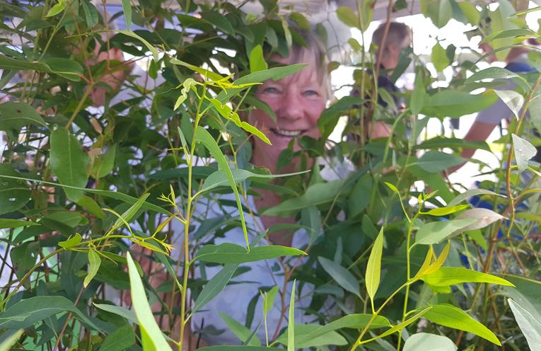 KOALA GROUP: Jill Madden.