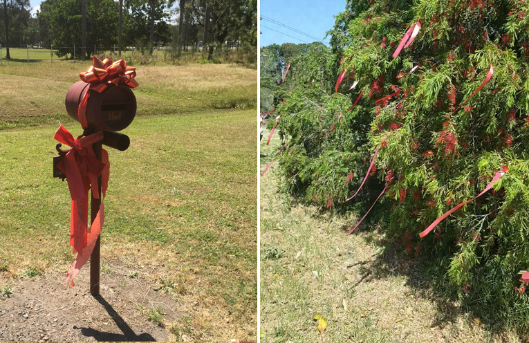 Red ribbons adorn homes and properties in Williamtown and Salt Ash.(left) The giant bush in the centre of the roundabout at Paul's Corner Salt Ash is covered in red ribbons.(right)