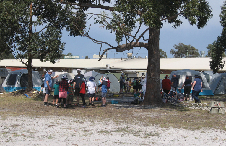 'Tent city' – cubs setting up their camp.