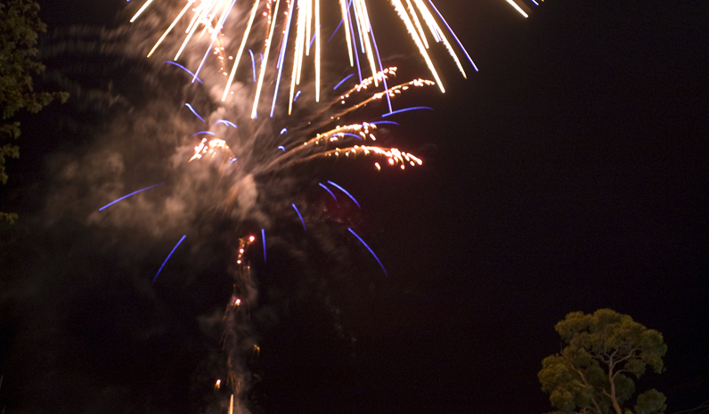 The fireworks display was spectacular, and enjoyed by a large crowd.