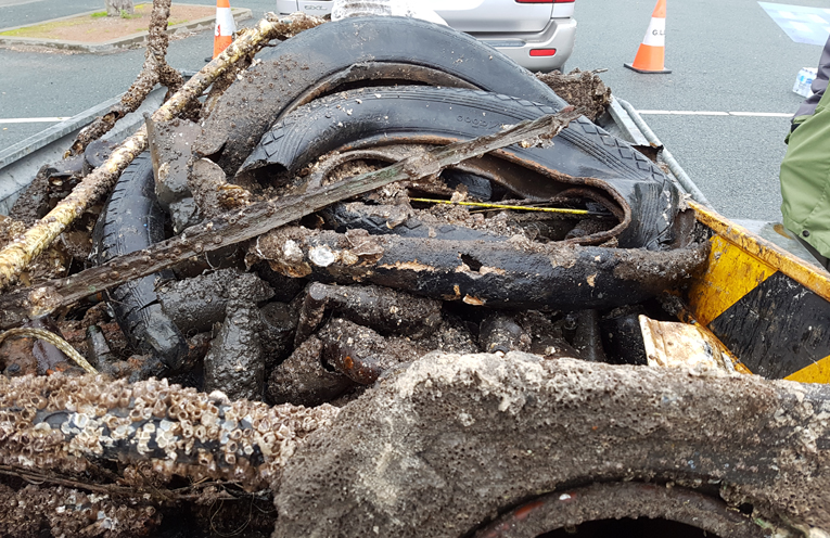 MYALL RIVER CLEAN UP: Just some of the rubbish from the sea bed