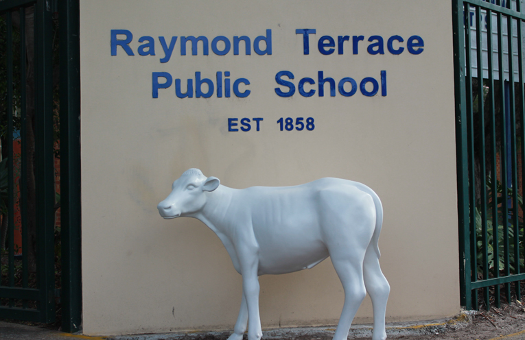 Raymond Terrace Public School's Calf to be decorated by students.