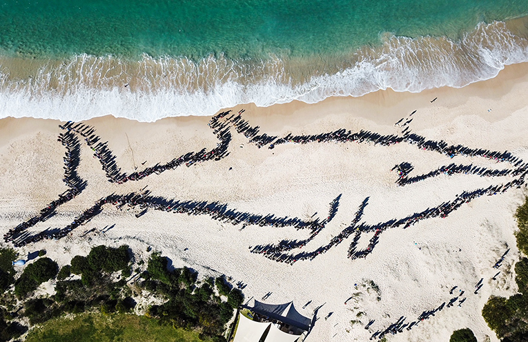Aerial shot of the 1300 plus people and 4 dogs that attended and participated in the human whale at Fingal Beach on 15 July.